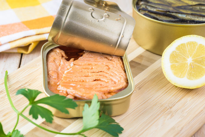 is canned salmon good for cats