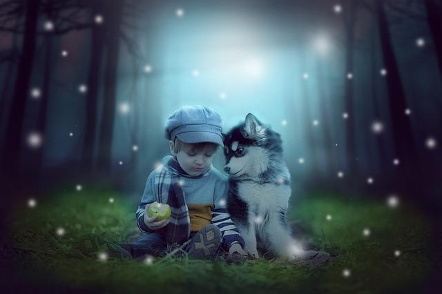 husky pupies and baby
