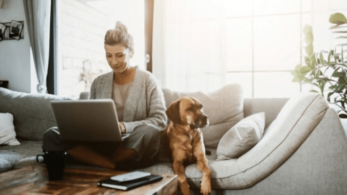 Take Your Workspace Back From Your Dog